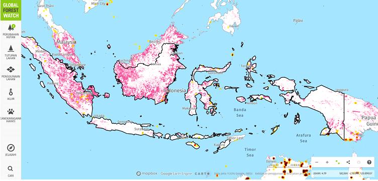 gfw-maps